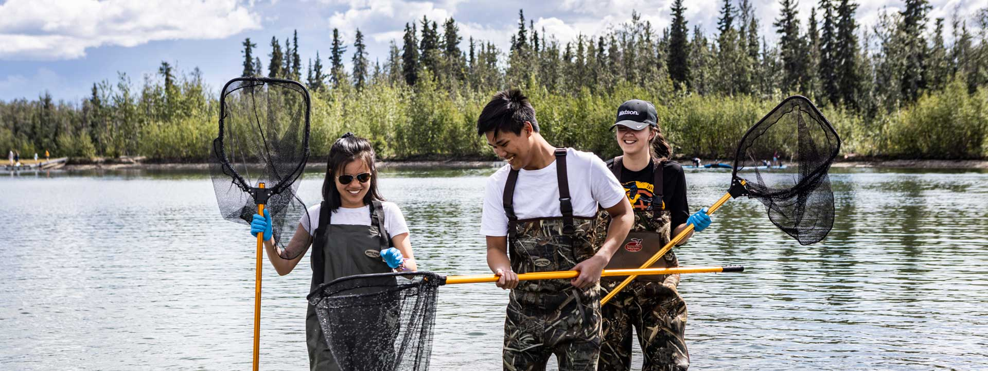 UAF RAHI students, holding nets and wearing chest wader boots, conduct field collection research on a summer day at Tanana Lakes