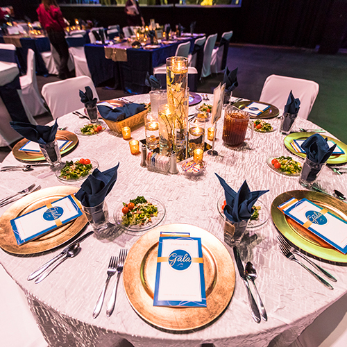 Blue and Gold Gala