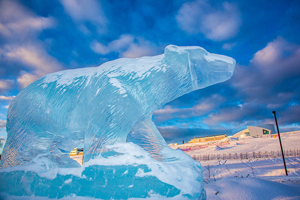 Polar bear ice sculpture
