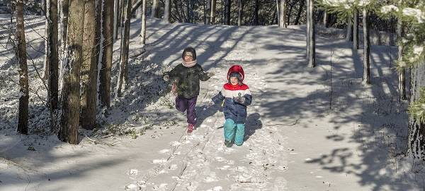 Two children walking through a sunny forest, with snow on the ground.