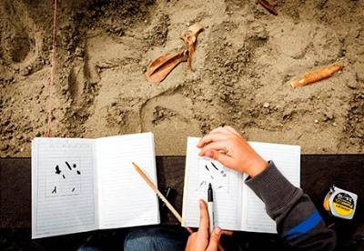 Closeup of an archaeological site with a pair of hands sketching an artifact in a notebook.
