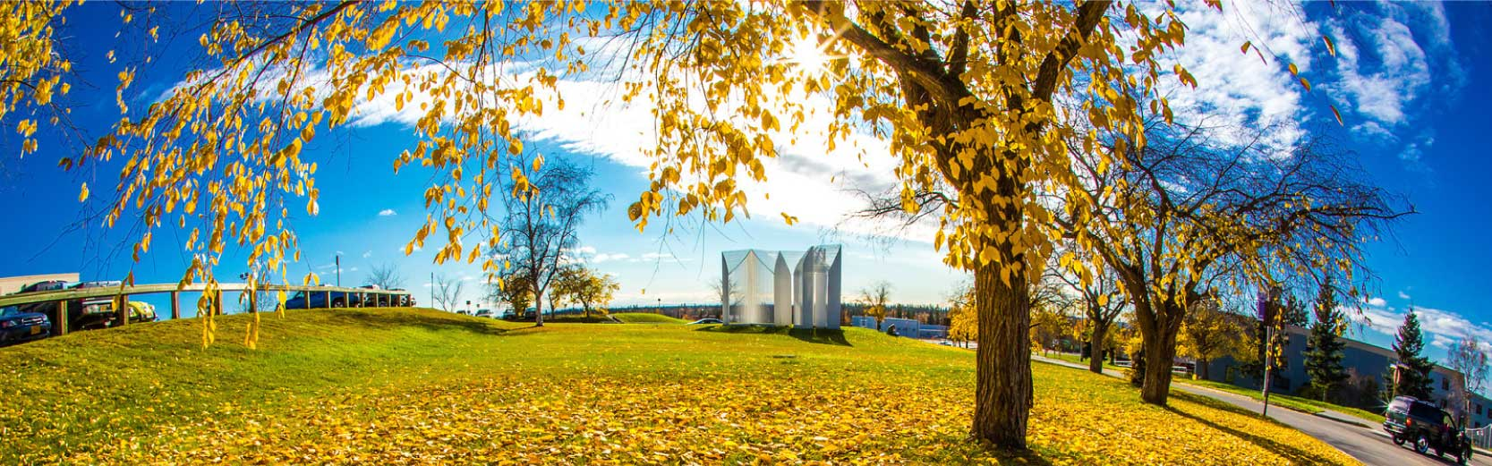 Panoramic photo of autumn trees and the Elysian sculpture on the Fairbanks campus