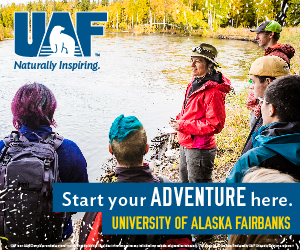 UAF brand display ad example 5